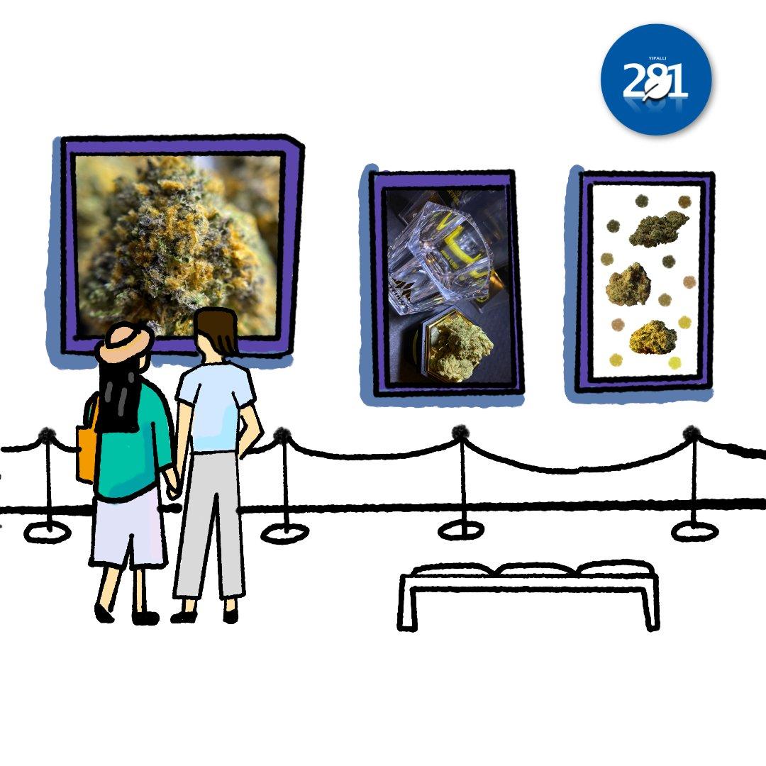 Yipalli 281 Media Gallery Showcase