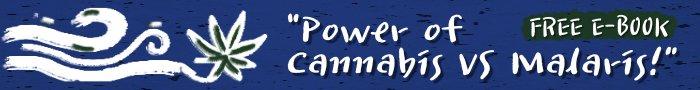 281 Dongui Bogam Free E-Book Banner